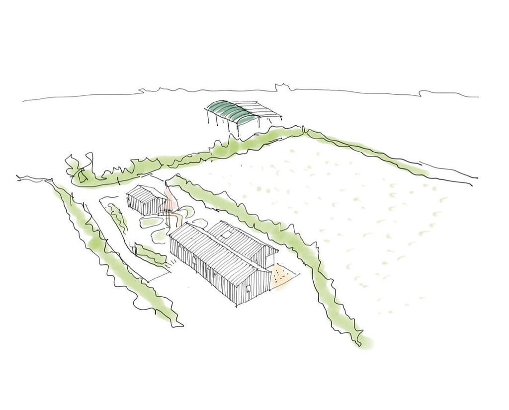 Sketch courtesy of Blee Halligan Architects
